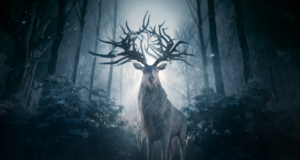 Shadow and Bone: Release Date, Trailer, Cast and Updates!