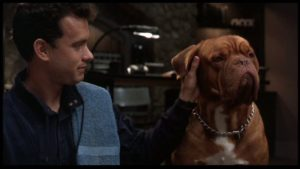 Turner & Hooch Season 1: Release Date, Cast and More Updates!