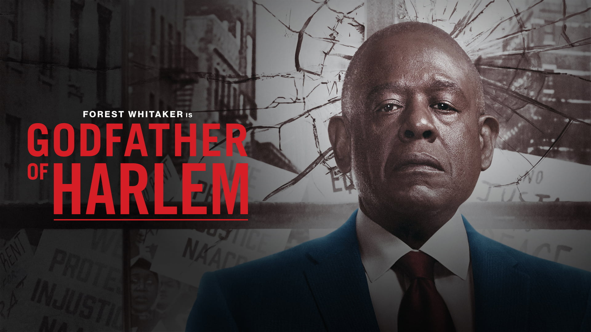 Godfather of Harlem Season 2: Release Date, Plot, Cast and Latest Updates!